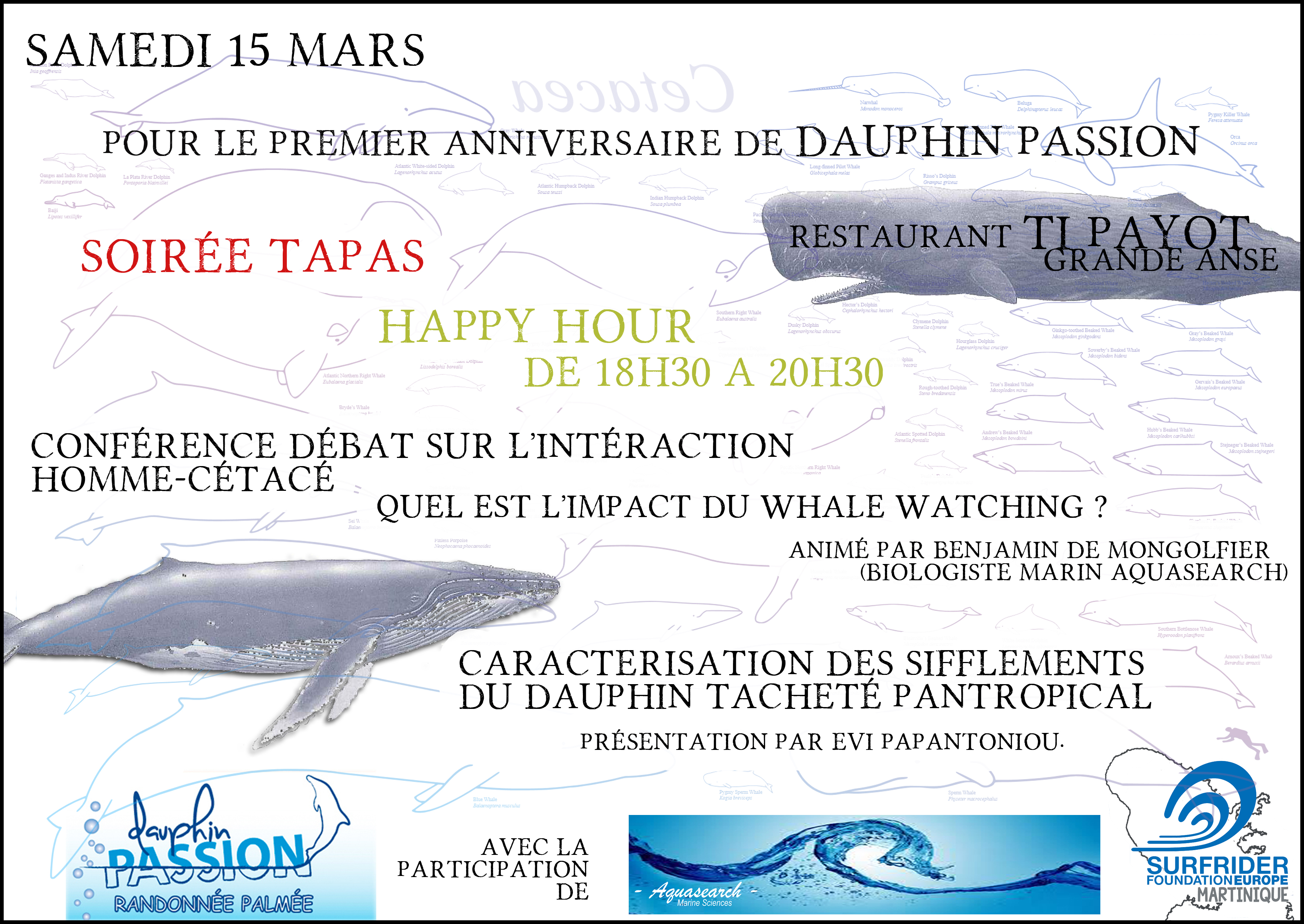 affiche passion dauphin